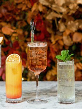 Æcorn Aperitif Cocktails