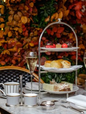 Autumn Afternoon Tea